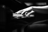Grey scale shot of a the hands of a person playing the piano