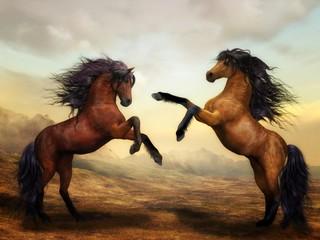 horse rearing up on black background