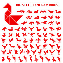 Set Of Vector Tangram Puzzles ...