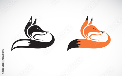 Vector of fox design on white background Canvas Print