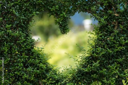 Coeur végétal Saint Valentin Wallpaper Mural