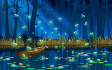Firefly And Boat In The Swamp In The Full Moon Night