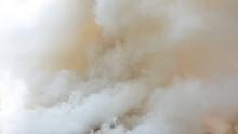 Background Of White Smoke, Fog Or Smoke Background, Smog Abstract Background.