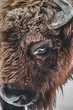 canvas print picture Closeup of a brown bison eye with horns under the lights during daytime
