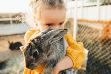 Little Girl Playing With The Rabbits In The Petting Zoo. Easter Tradition Of Visiting A Rabbit.