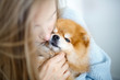 Leinwanddruck Bild - Close-up portrait of a woman and dog breed Pomeranian Spitz. A blond woman holds a dog in her arms and hugs him.