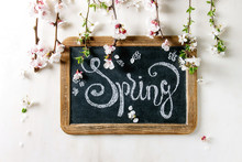 Spring Blossom Flowers Pear An...