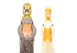 Portrait of goose and duck with gosling and duckling on the head isolated on white background