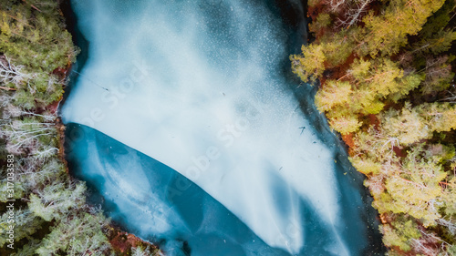 Widok na zamarźnięte jezioro w srodku skandynawskiego lasu