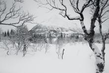 Lofoten Islands After A Snowfa...