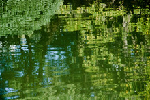 Green Reflections On Moving Water Surface