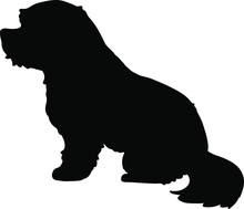 Silhouette Of Maltese Dog Sitting