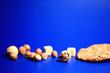 Leinwanddruck Bild - nuts diet background