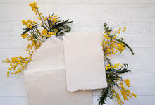 Flat Lay Top View Composition, Blank Card And Envelope In Vintage Beige Paper And Mimosa Flowers On The Light Grey Background, Concept To Display Your Art, Spring Holidays Composition