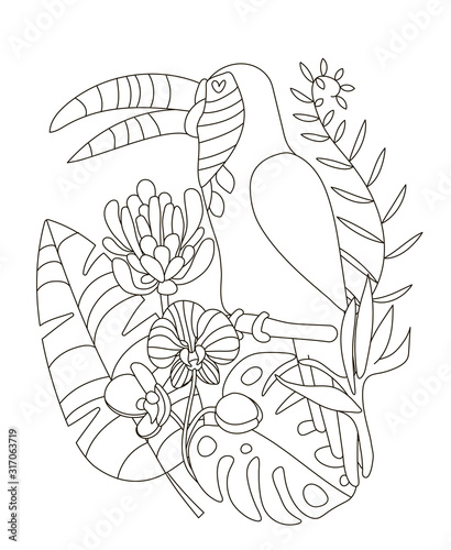 Hand Drawing Coloring Pages For Children And Adults A Beautiful Coloring Book In A Linear Style For Creative Creativity Antistress Coloring Book With Toucan Tropical Flowers Orchid Monstera Palm Buy This