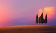 Leinwanddruck Bild - Beautiful nature countryside landscape; farm field and cypress trees over sunset sky