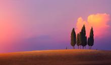 Beautiful Nature Countryside L...