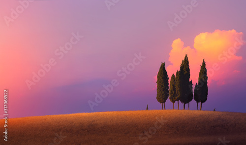 Foto Beautiful nature countryside landscape; farm field and cypress trees over sunset