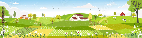 Rural farm landscape with green fields, farm house, barn, animals cow, blue sky and clouds,  Vector cartoon Spring or Summer landscape, Panoramic countryside landscape