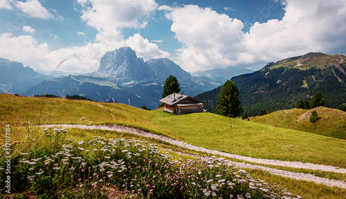 Wall mural - Wonderful Alpine valley in Dolomite Alps. Beautiful view of idyllic alpine mountain scenery with blooming meadows and majestic mountain peaks on a beautiful sunny. Val Gardena. Dolomimes mountains