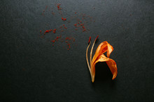 Dried Tiger Lily On Dark Backg...