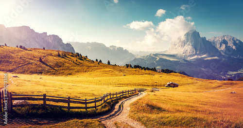 Obraz Wonderful Alpine valley in Dolomite Alps. Beautiful view of idyllic alpine mountain scenery with blooming meadows and majestic mountain peaks on a beautiful sunny. Val Gardena. Dolomimes mountains - fototapety do salonu