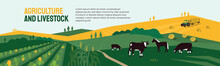 Background For Agriculture Or Livestock Company. Vector Illustration Of Farm Land, Cows And Horse In Pasture, Tractor On Hayfield. Corn Field, Farming In Countryside. Template For Banner, Print, Flyer