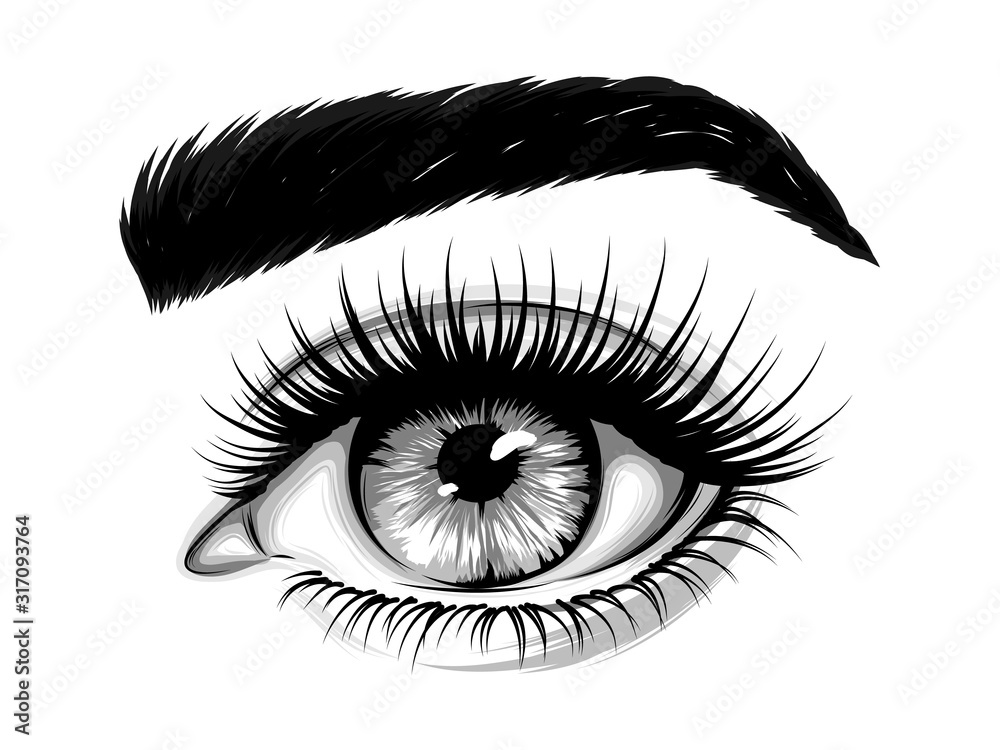 Fototapeta  Hand-drawn realistic image of a woman's eye with eyebrows and long eyelashes. Fashion illustration. Vector EPS 10.