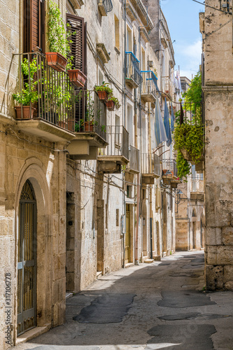 Scenic summer sight in Altamura, famous apulian town in the Province of Bari Canvas Print
