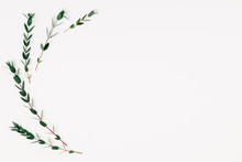 Minimal Composition Of Eucalyp...