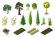 Set Isometric Of Plants For Ga...