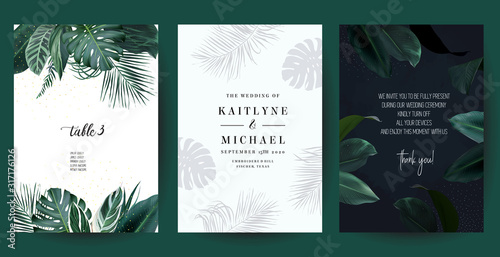 Photo Tropical frames arranged from exotic emerald leaves