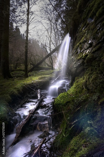 Waterfall surrounded by trees and rocks covered in mosses and branches in a forest