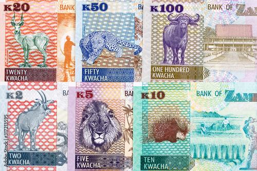 Money from Zambia a business background Billede på lærred