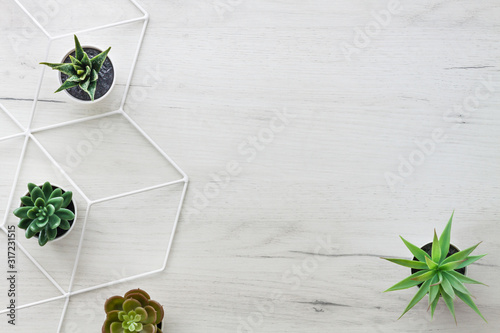 Fototapeta White wooden desk with succulent plants. View from above. Geometric pattern. Copy space. Scandinavian style. Wooden background. obraz