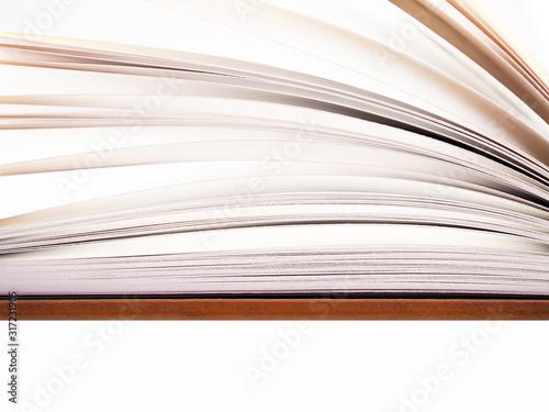 Fotografie, Tablou Open book