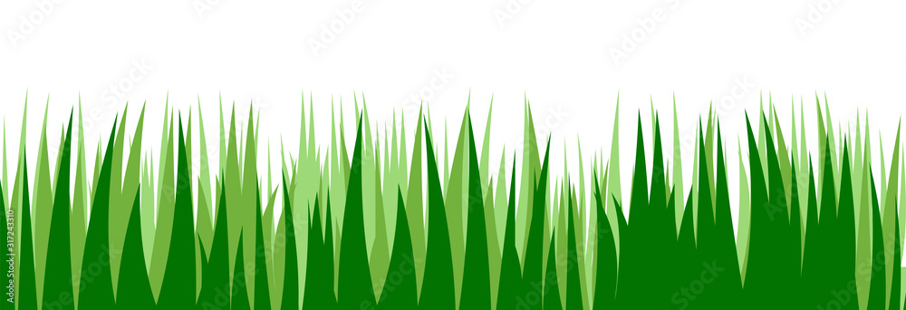 Fototapeta Grass. Vector. Juicy spring grass to frame the bottom. The horizontal location. Background picture. Isolated object.