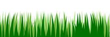Grass. Vector. Juicy Spring Gr...