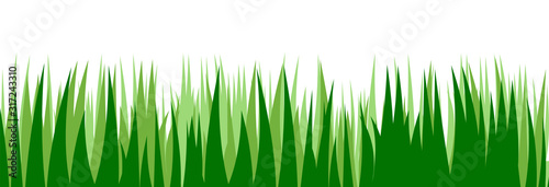 Obraz Grass. Vector. Juicy spring grass to frame the bottom. The horizontal location. Background picture. Isolated object. - fototapety do salonu