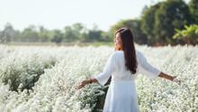 Portrait Image Of An Asian Woman Walking Into A Beautiful Cutter Flower Field