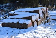 Winterwunderland In Der Berhei...