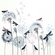 Elegant vector illustration with dandelions and dragonflies