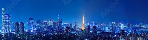 光が溢れる東京の夜景 Canvas Print