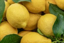 Close View Of Fresh Yellow Lem...