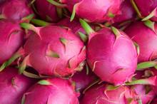 Fresh Red-pink Dragon Fruit Or...