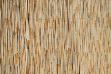 Reed Wall Texture