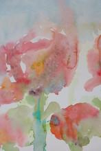 Garten Mohn Aquarell Gemälde