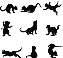 Vector Image Of Silhouettes Of Playing Seals.