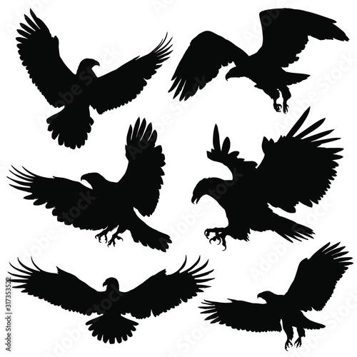 Eagle / Hawk silhouettes. Vector illustration Wall mural