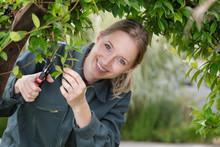 Portrait Of Female Gardener Trimming Arched Bush